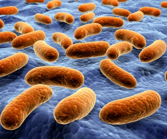 how to kill bacteria on surfaces